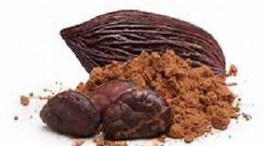 قیمت فروش عمده بهترین پودر کاکائو