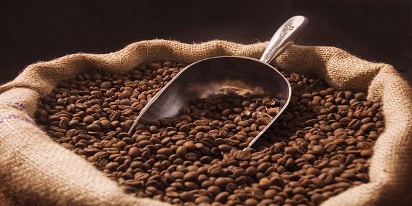 فروش قهوه عمده در شیراز