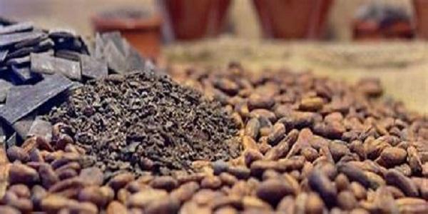 قیمت پودر کاکائو فله ای