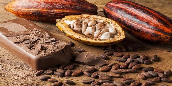 خرید پودر شکلات تلخ