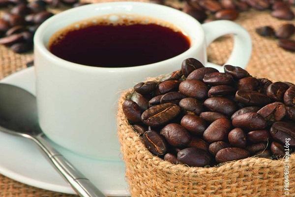 مراکز فروش عمده دانه قهوه