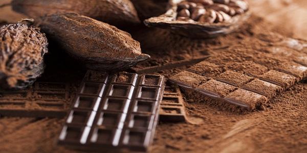 تامین کننده پودر کاکائو تولید کنندگان