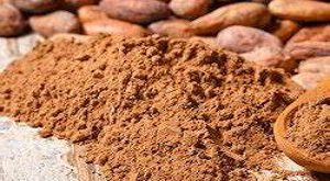 تامین کننده پودر کاکائو از واردات