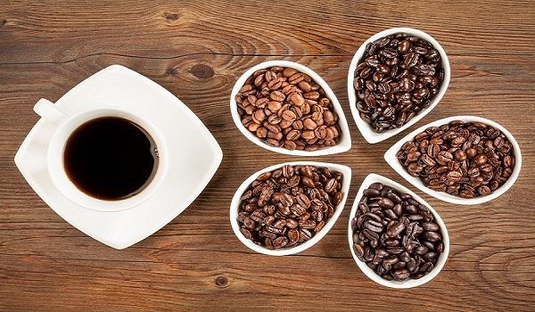 نمایندگی پخش دانه قهوه