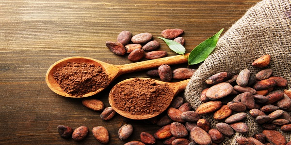 فروش عمده پودر کاکائو در طعم های مختلف