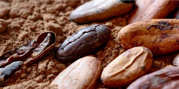 محل فروش پودر کاکائو پشمک شکلاتی