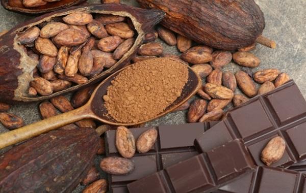 بهترین پودرهای کاکائو الکالایز