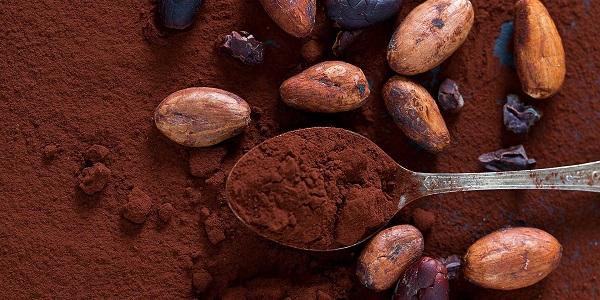 فروش پودر کاکائو التین مارکا